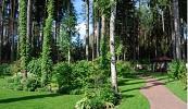 Изображение к статье - Ландшафтный дизайн на лесных участках