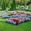 Фото цветников и миксбордеров