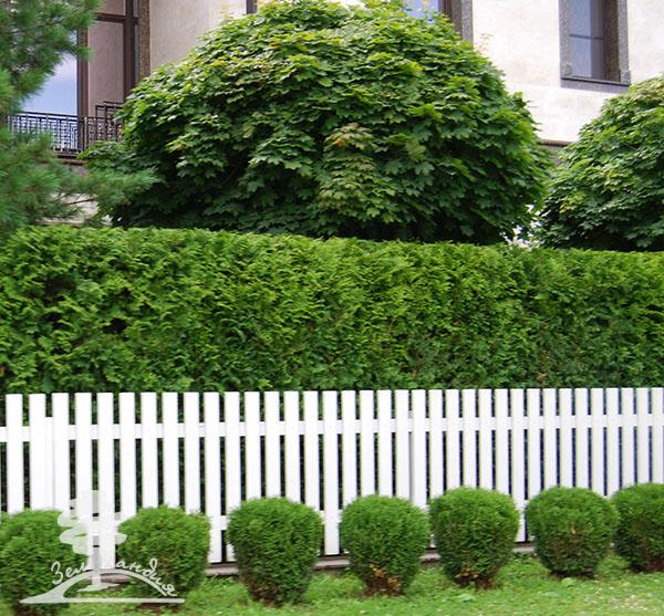 Ландшафтный дизайн перед домом. Оформление ландшафтного