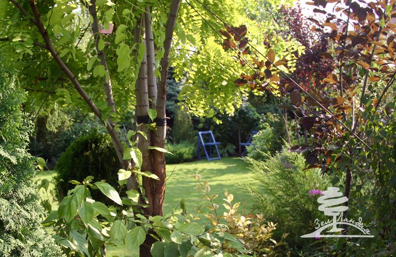 Создание парка или сада в английском